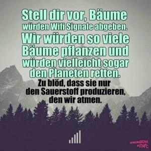 wifi_baeume